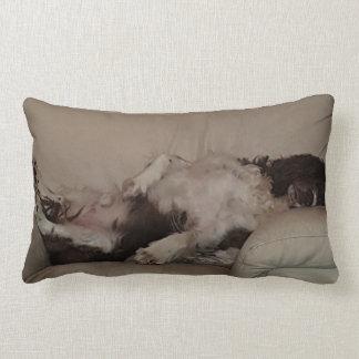 Cotton lumbar pillow/snooze time lumbar pillow