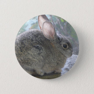 cottontail rabbit 2 inch round button