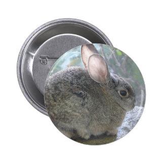 cottontail rabbit 2 inch round button