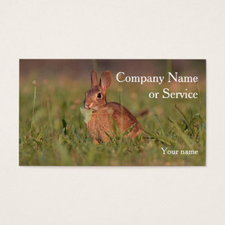 Cottontail rabbit business card
