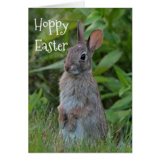 Cottontail rabbit card