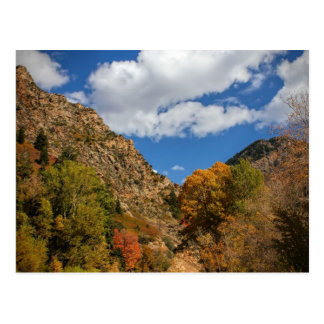 Cottonwood Canyon Scenic Byway Autumn in Utah Postcard