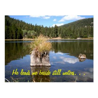 Cottonwood Meadow Lake Postcard