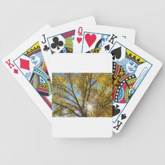 Cottonwood Sunshine Bicycle Playing Cards