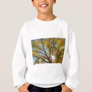 Cottonwood Sunshine Sweatshirt