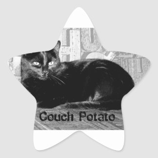 """Couch Potato"" Black Cat Star Sticker"