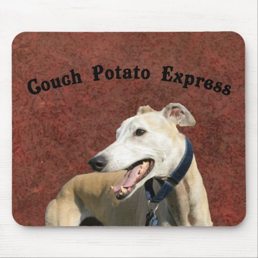 Couch Potato Express Mouse Pads