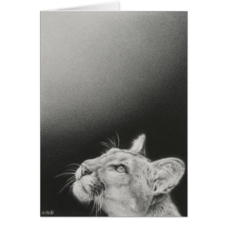 Cougar Blank Card by Andrew Denman