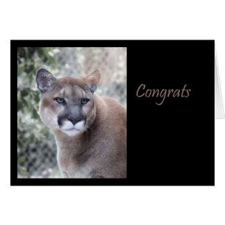 Cougar Congratulations Card
