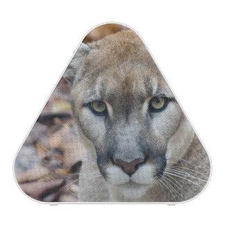 Cougar, mountain lion, Florida panther, Puma 2 Blueooth Speaker