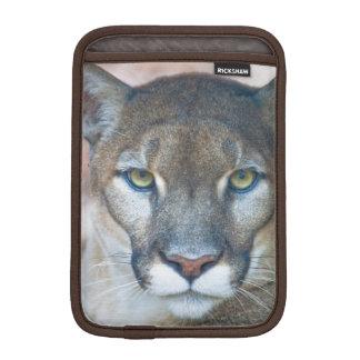 Cougar, mountain lion, Florida panther, Puma 2 iPad Mini Sleeve