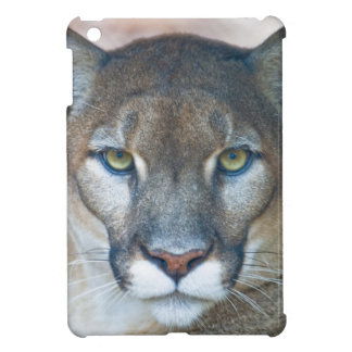 Cougar, mountain lion, Florida panther, Puma iPad Mini Covers