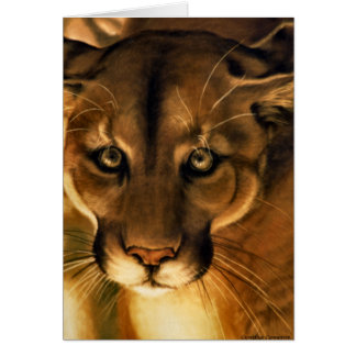 Cougar - Mountain Lion - Puma Card