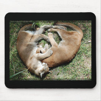 Cougars Love Mouse Pad
