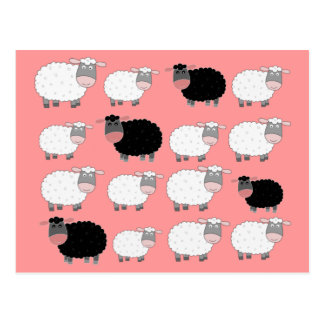 Counting Sheep Postcard