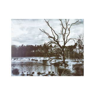 country cape Drenthe Canvas Print