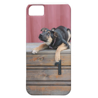 Country Charm Iphone case