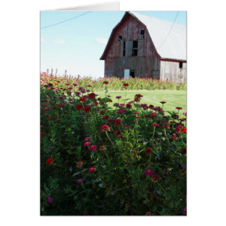 Country Close To God, Barn Card