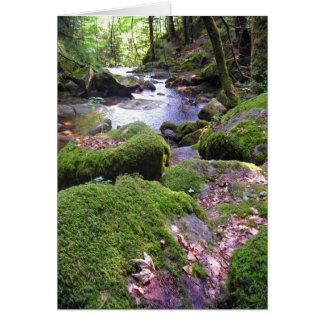 Country Creek Card