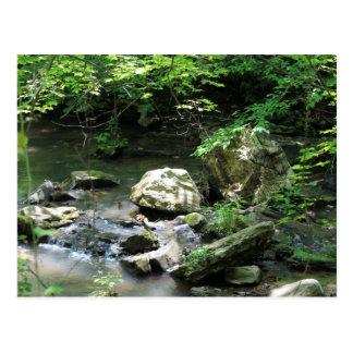 Country Creek Rocks Post Card