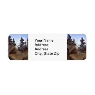 Country landscapes clear summer  sky rocks pine. return address label
