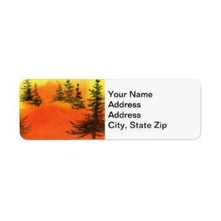 Country landscapes scenic views  sunrise pines.
