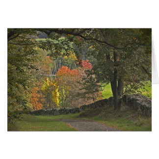 Country Lane Card