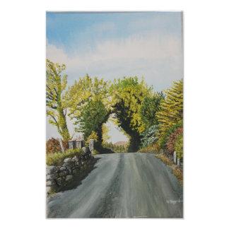 Country Lane, Cork Ireland Photo Print