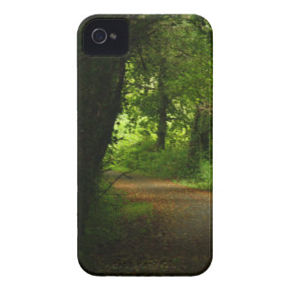 Country lane iPhone 4 cover
