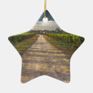 Country Lane Tuscany Itl4015 Ceramic Star Ornament