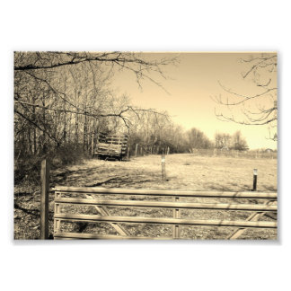 Country Life 7x5 Black and White Photographic Prin Photo Print