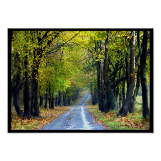 Country Road in Frederick, Maryland Poster