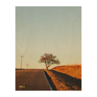 Country Road in Omaha - Autumn 2016 Wood Wall Art