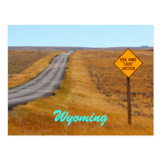 Country Road Open Range Wyoming Postcard