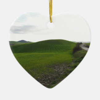 Country road over rolling green hills and valleys ceramic ornament