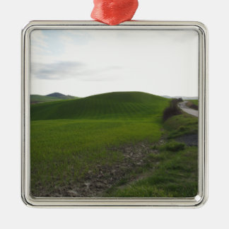 Country road over rolling green hills and valleys metal ornament