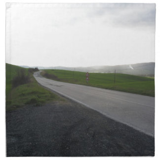 Country road over rolling green hills and valleys napkin