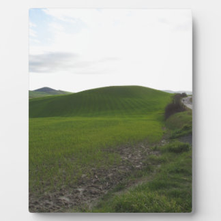 Country road over rolling green hills and valleys plaque