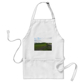 Country road over rolling green hills and valleys standard apron