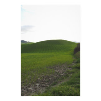 Country road over rolling green hills and valleys stationery
