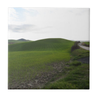 Country road over rolling green hills and valleys tile