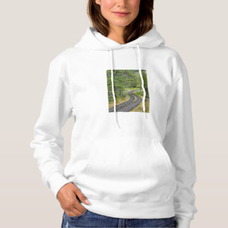 Country road through trees, Oregon Hoodie