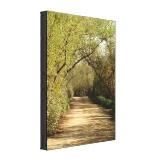 Country Road Wrapped Canvas