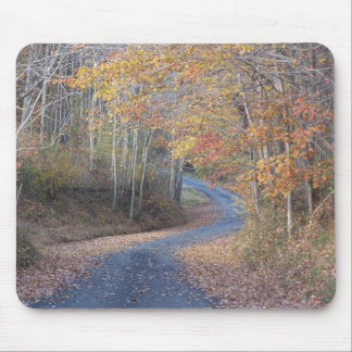 Country Roads Mouse Pad