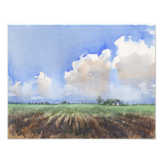 Country Rows Art Photo