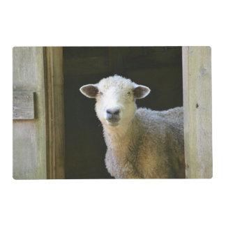 Country Sheep Laminated Place Mat