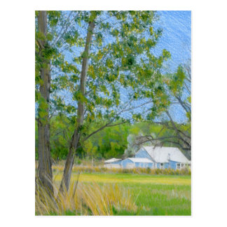 Country Spring Coloured Pencil Drawing Postcard