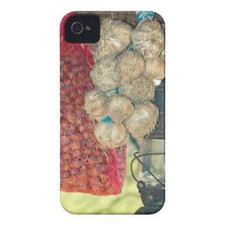 Country stuff iPhone 4 Case-Mate case