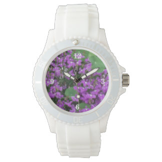 Country Summer Bloom Watch