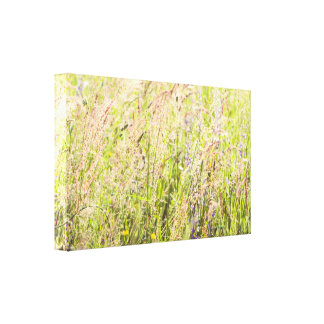 Countryside flowers canvas print